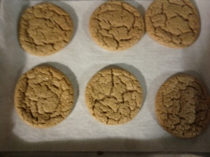 Gluten-Free/FodMap Friendly Peanut Butter cookies