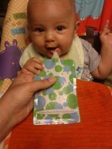 Pumpkin Yogurt Smoothie makes Baby Happy!